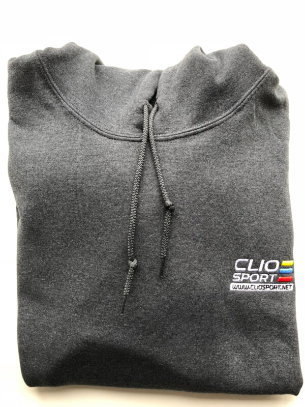 Hoodie With Embroidered Colour Logo